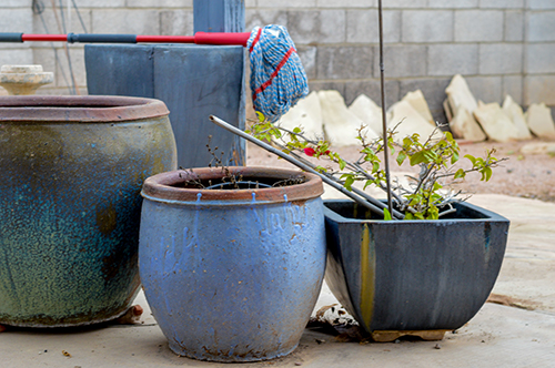 Pots in backyard now sit empty. Kappas switched from a power chair due to her electrical sensitivity to a manual chair which she cannot push unassisted.