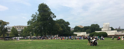 People line up on the National Mall