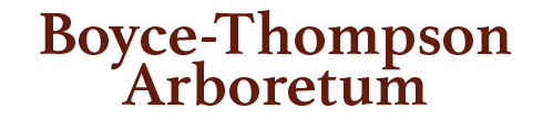Boyce-Thompson Arboretum