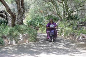 A power chair user rides along a nature path, surrounded by foliage