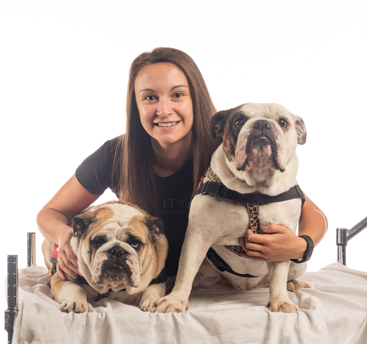 360 To Go: The Difference Between Service and Therapy Dogs