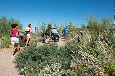 A group of four people follow a trail in the Arizona-Sonora Desert Museum. Three people are walking, while one is using a wheelchair.