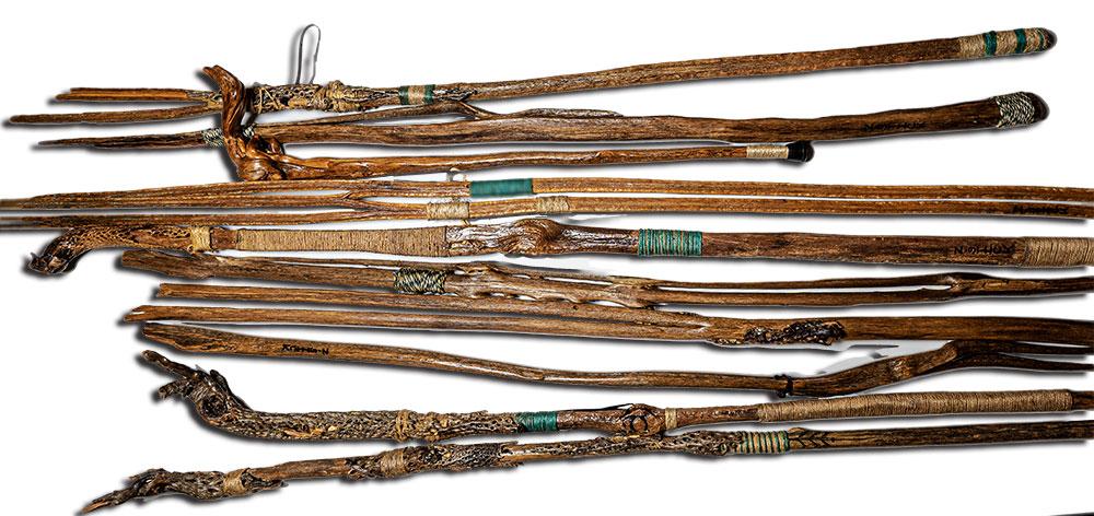 Various cactus bone walking sticks.