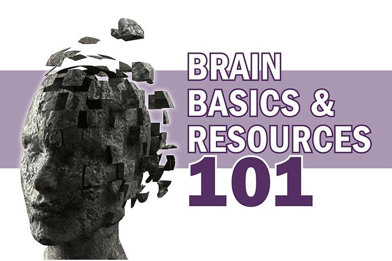 Brain Basics and Resources 101